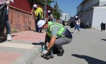 Akdeniz'de Dünya Temizlik Günü Etkinliği